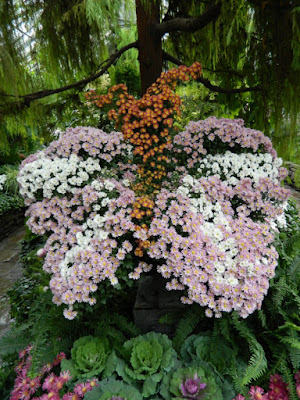 Chrysanthemum butterfly display at Allan Gardens Conservatory 2015 Chrysanthemum Show by garden muses-not another Toronto gardening blog