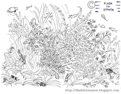 aquarium line drawing