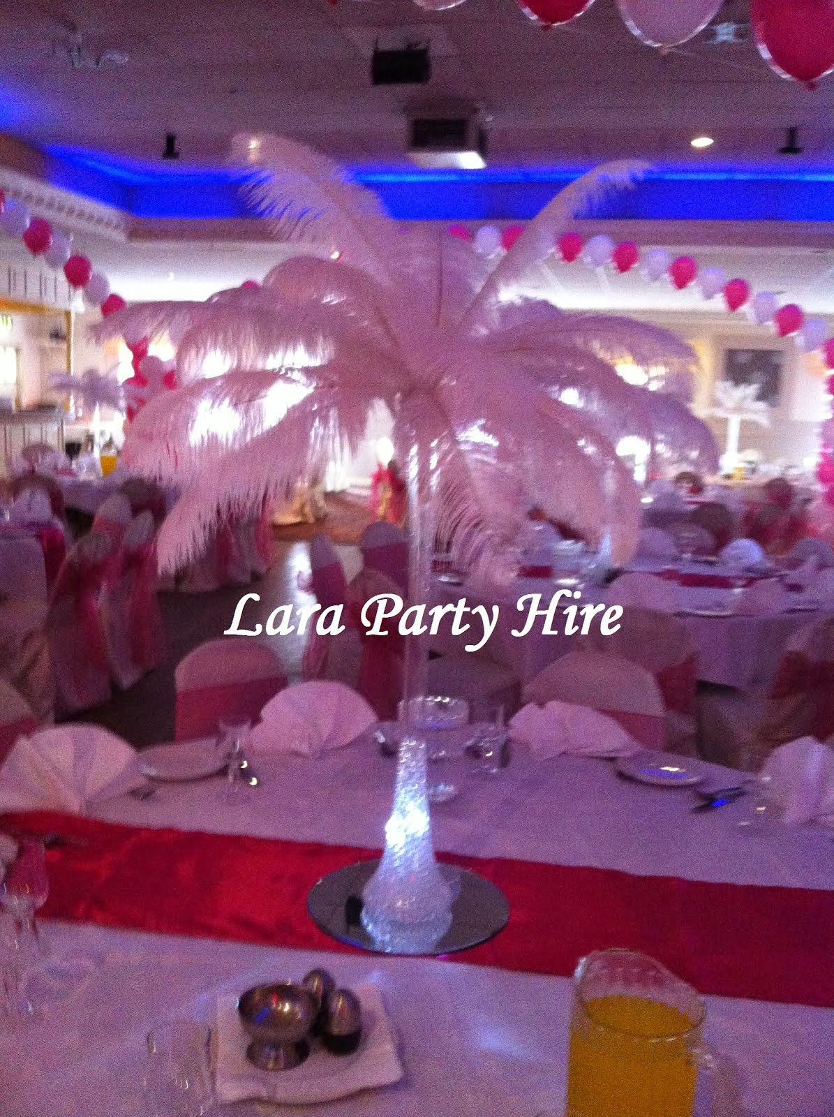 Lara party hire ostrich feather centerpieces ostrich feathers 20 reviewsmspy