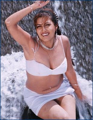 Desi Mallu Aunty Open Blouse Without Saree Still   Celebrities Photos ...