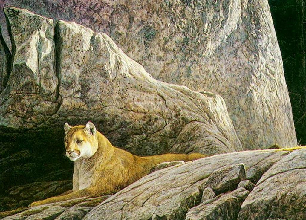 pinturas-de-animales-salvajes