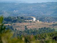 L'Oliva des de la carretera de Castellnou de Bages