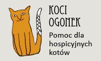 Pomóż kotom z hospicjum!