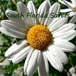 SouthFloridaSavers.com