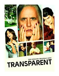 Assistir Transparent 2x10 - Grey Green Brown & Copper Online