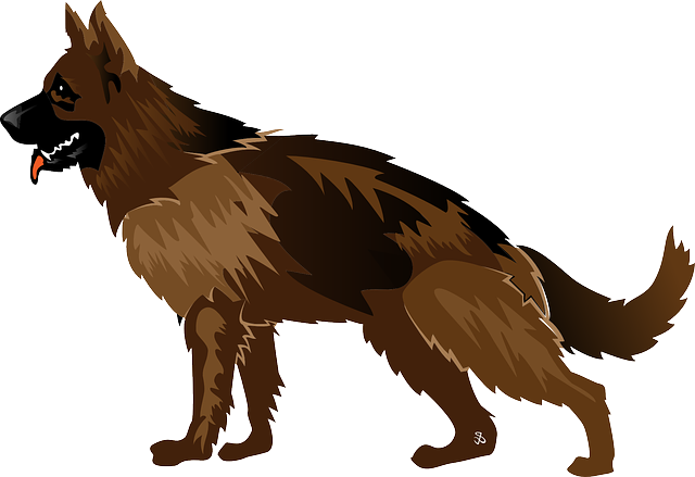 significado carta cachorro lenormand