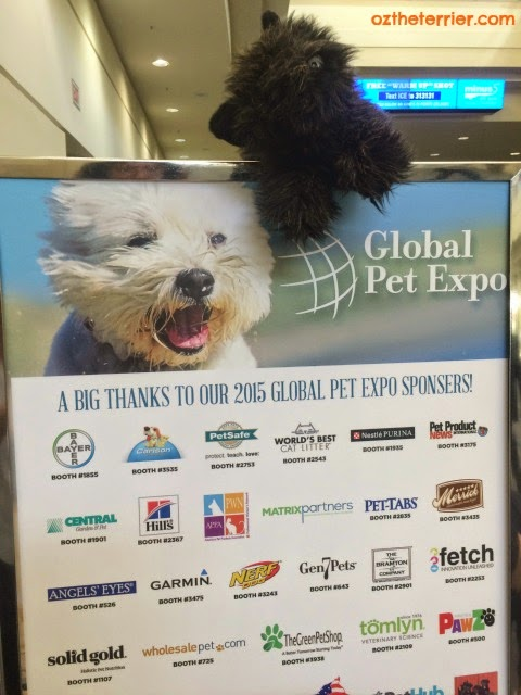 Oz the Terrier at Global Pet Expo in Orlando, Florida