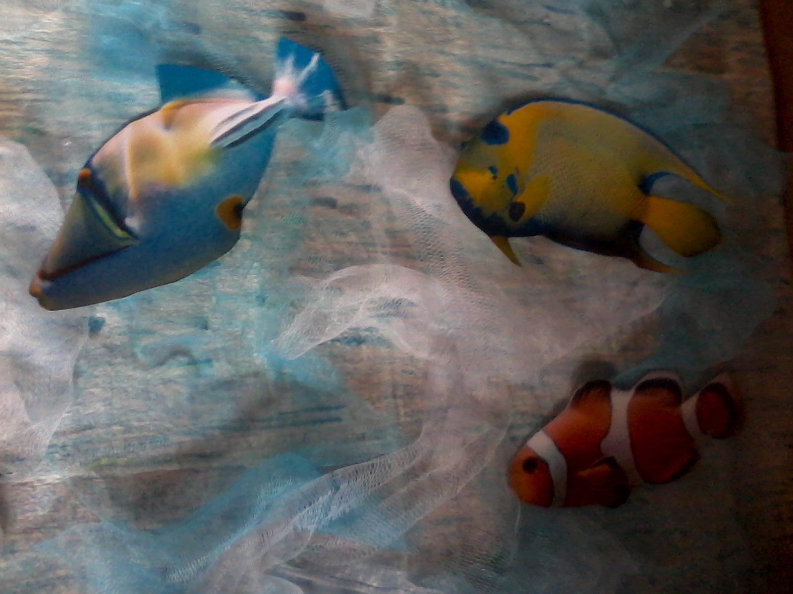 Forever wedding planner come creare un tableau de mariage for Creare pesci