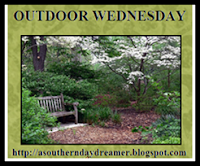 http://asoutherndaydreamer.blogspot.com/2013/12/1211-outdoor-wednesday-257.html