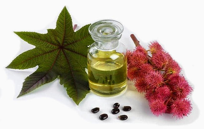 Benefits And How To Uses Castor Oil For Dry Eyes