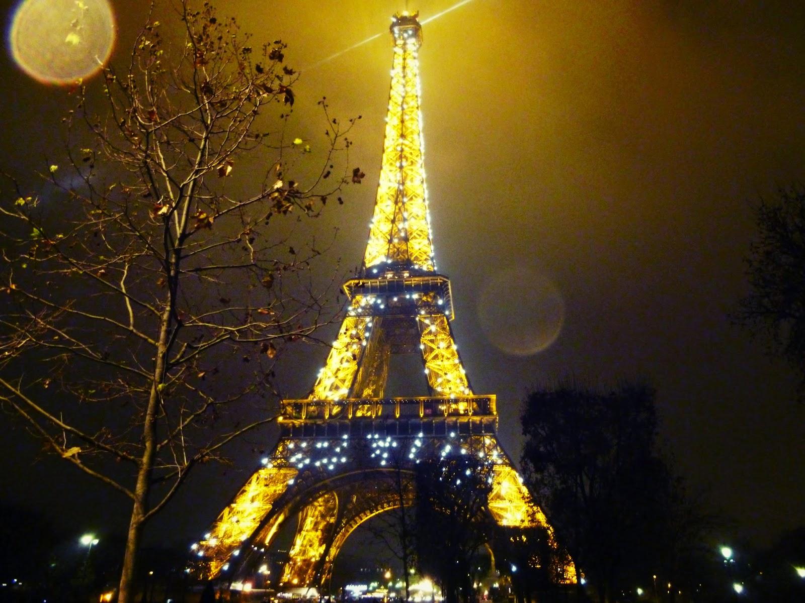 paris eiffel tower alight