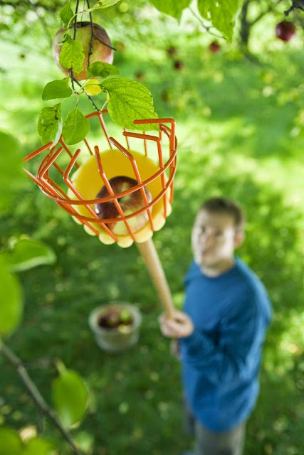 Useful Gardening Products and Gadgets (15) 11