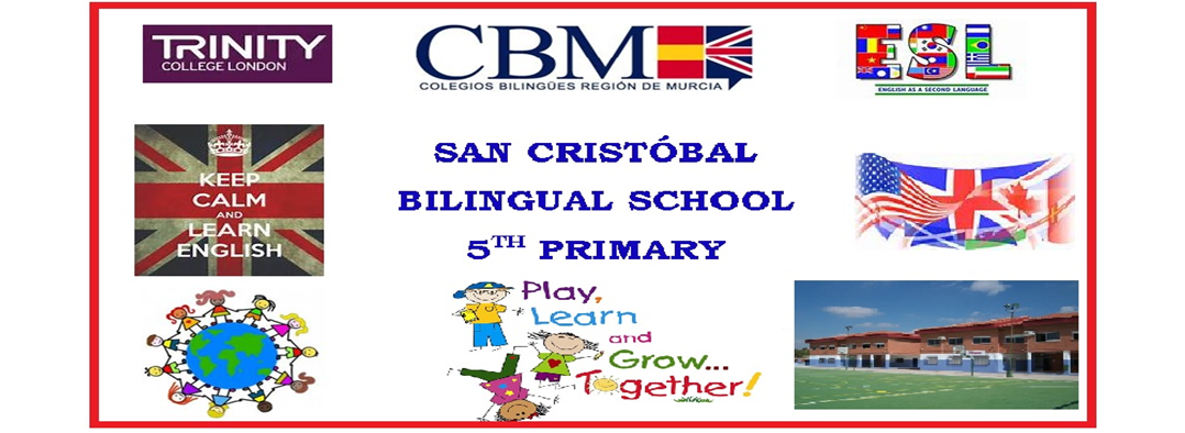 BILINGUAL 5th