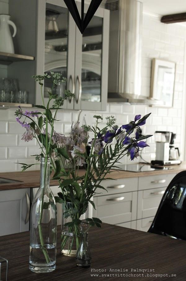 industrikök, industriellt kök, köket, kökets, trädgårdsblommor, blommor från trädgården, plocka in blommor, blommor i vas, köksö, hth kök, gråa köksluckor, rostfria hyllor, vitrinskåp, hängande vitrin, vitrinskåpet, hundkex, glas, termos eva solo, vitt, vita, kakelplattor, diskbänk, diskbänkar, inspiration