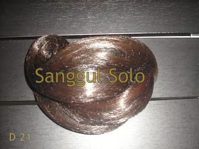 Model Sanggul D21