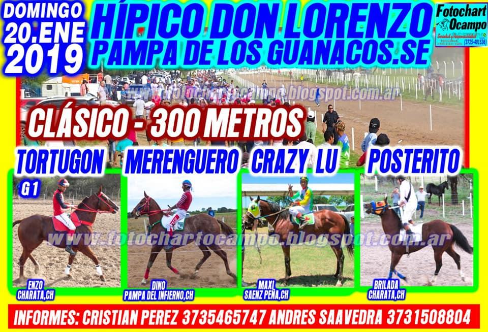 guanacos 20-1