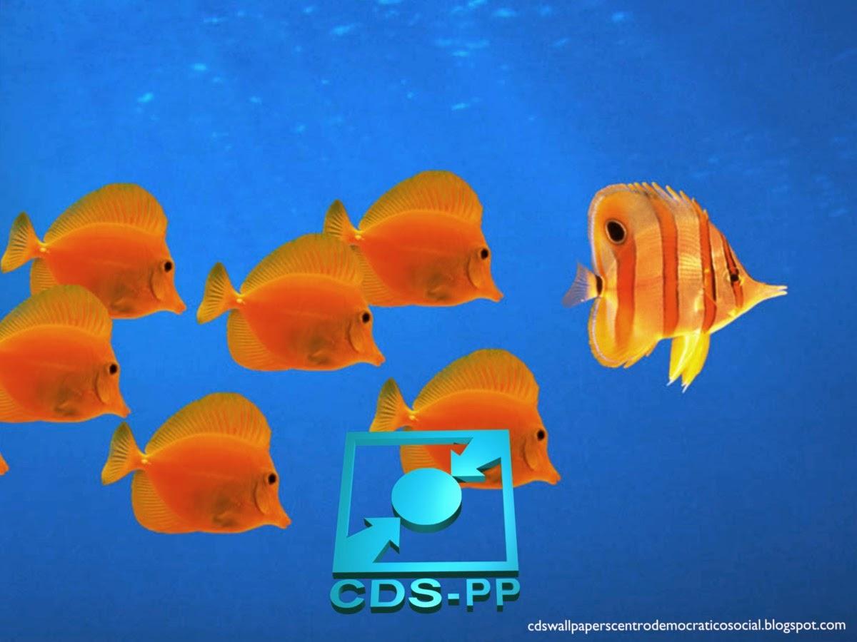 Papel de parede do Partido Centro Democrático Social emblema inclinado do CDS-PP em estilo stencil para utilizar como fundo de tela Aquário com Peixes do seu ambiente de trabalho.
