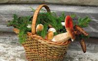 coș cu ciuperci
