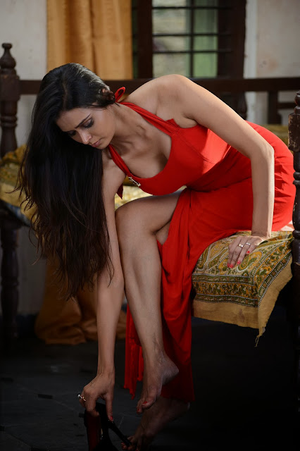 Actress Meenakshi Dixit  Pictures in Adavi Kachina Vennela Movie 0004.jpg