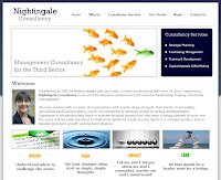 Nightingale Consultancy website