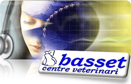 "Centre Veterinari  ""basset"""