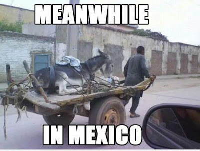 Meanwhile in Mexico