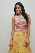 regina cassandra latest glam pics-thumbnail-14