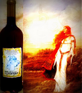 Hidromel Milenar- Mead of the Gods