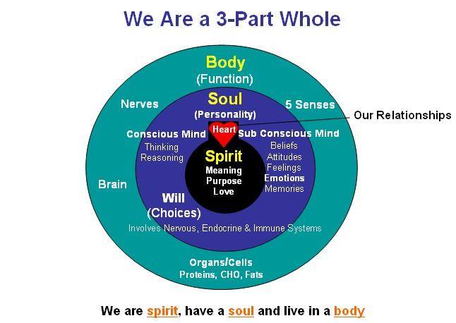 Spirit Soul Body Mind Emotions Will on Body And Soul Spirit Diagram