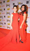 59th Idea Filmfare Awards function Gallery 2013-thumbnail-10