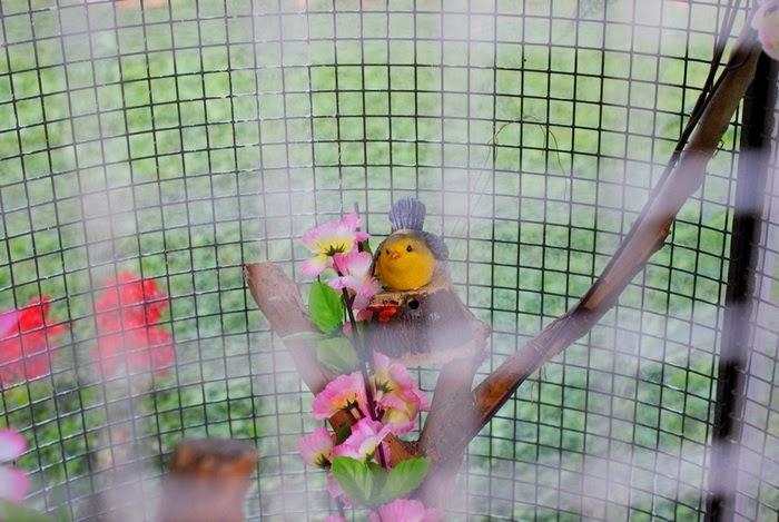 shabbychic home interiors birdcage diy