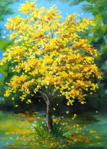 Daily painters of florida glorious tabebuia spring tree in yellow what a beautiful sign of spring when the tabebuia trees are in full bloom i painted this one before the rains washed away the blossoms mightylinksfo