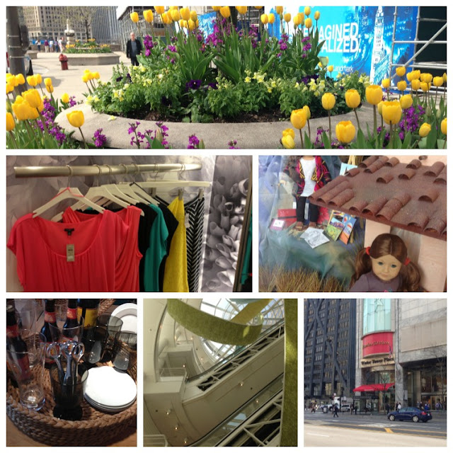 Michigan Avenue shopping | OrganizingMadeFun.com