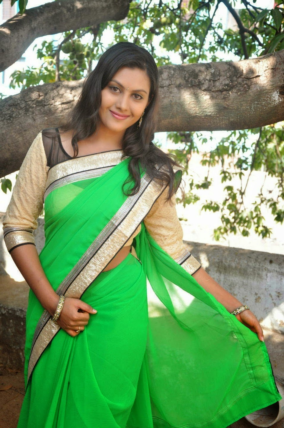 imagetwist.com  (lsm)@(lsm) imagesize:956x1440  South Actress Priyanka Latest Stills In saree