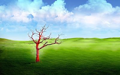 Green earth Widescreen Wallpaper
