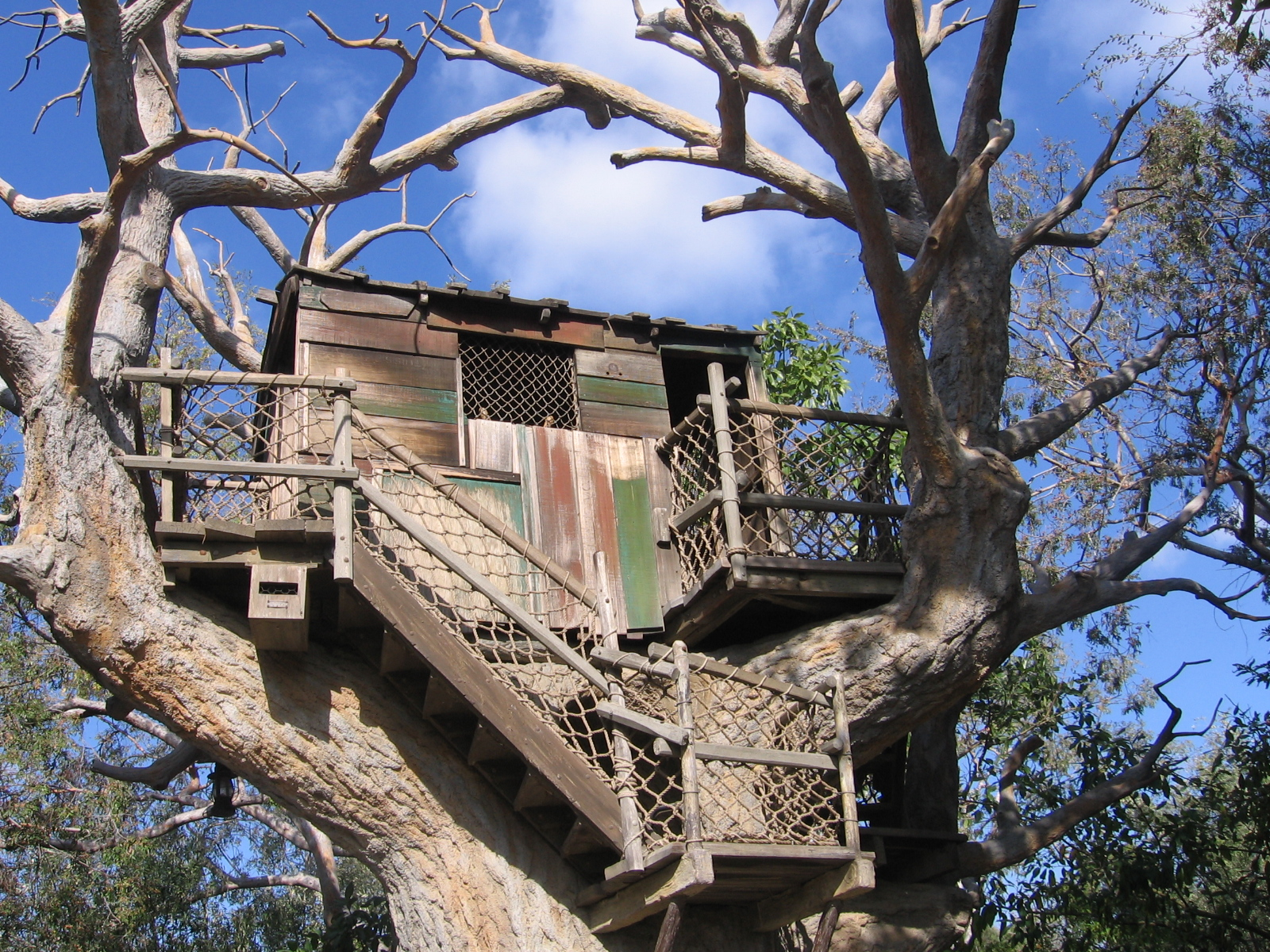 Top 20 beautiful and amazing tree house wallpapers pics for Best house wallpaper
