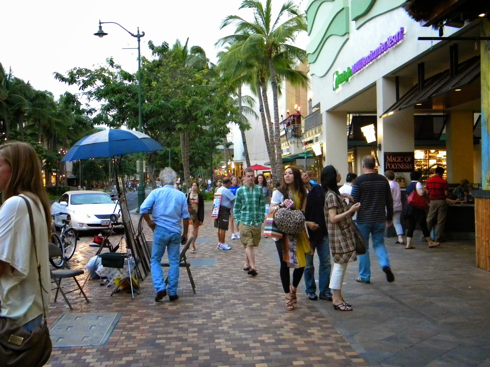 copyright 2015 All Hawaii News all rights reserved