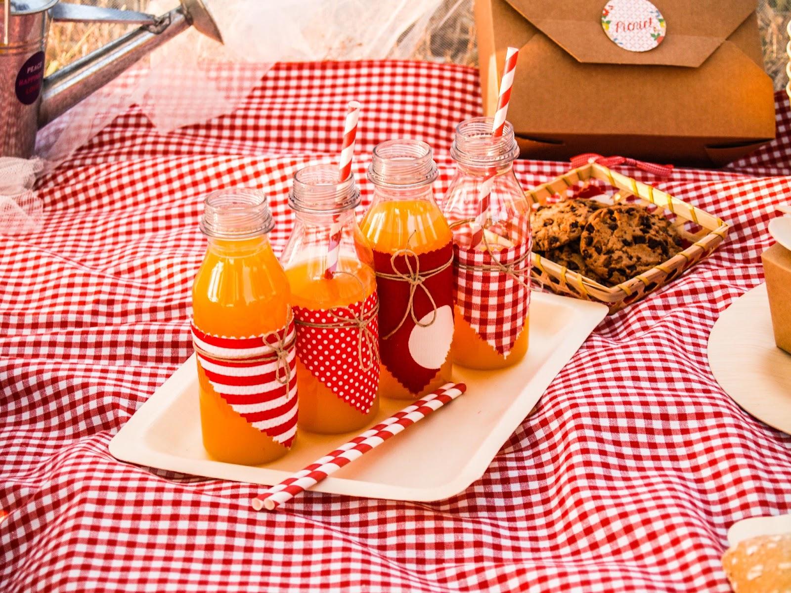 Kit de picnic sorteo blog cocott - Platos para picnic ...