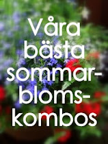 Bsta sommarkombo