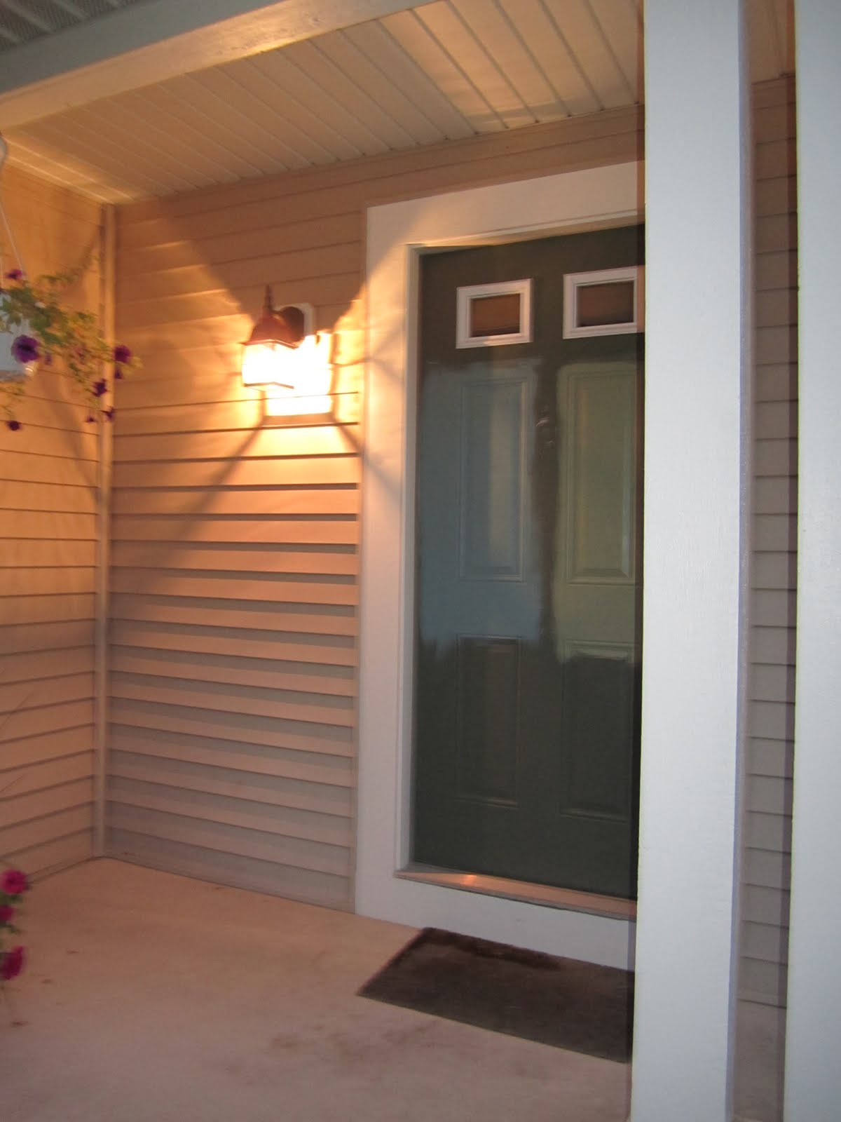 the stooch life front door exterior lights