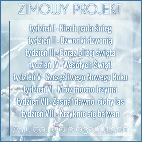 zimowy projekt u Asiulcowej :-)