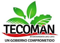 Ayuntamiento de Tecomán