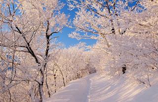 bajo el cielo azul la nieve