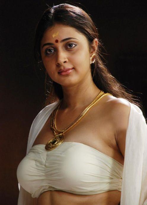 Indian Actress S In Saree