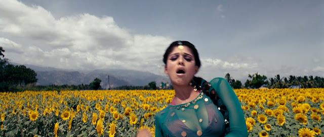 Nayanatara hot