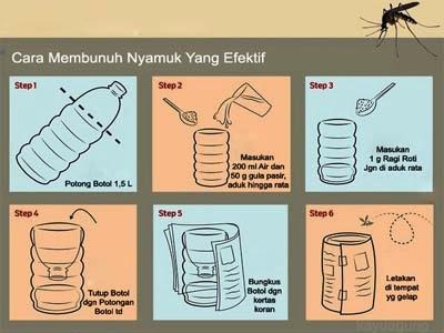 Cara Membunuh Nyamuk