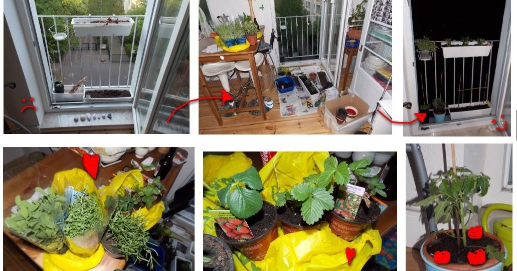 mademoiselle limettenfalter mein franz sischer balkon. Black Bedroom Furniture Sets. Home Design Ideas