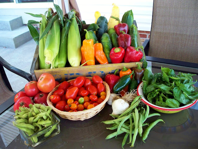 Organic corn tomatoes edamame basil dill peppers garlic green beans squash zucchini cucumber