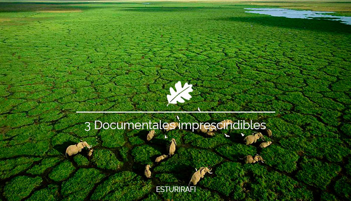 3 Documentales imprescindibles