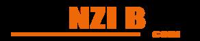 NZONZI BOY